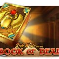 Top Spiel Book of Dead (Play'n Go) im Betzest Casino